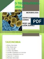 4. Staphylococcus
