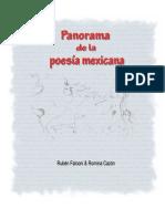 Panorama de la poesía mexicana - Romina Cazón