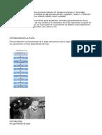 OBTENCION DE LA PLATA.doc