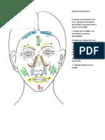Masaje Facial Pasivo