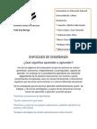 Enfoques de Enseñanza Frida Diaz Bariga