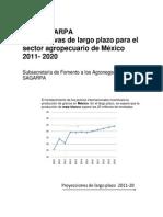 Perspectivas Largo Plazo 2011 2020