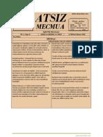 Atsız Mecmua - Sayı 8