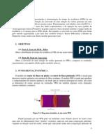 Relatório 2  (Cinética) PDF.pdf