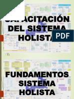 Sistema Holista
