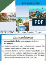 Eco Sistemas