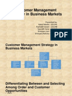 Customer Management Strategy in Business Markets