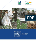 Tropical Beef Production Manual