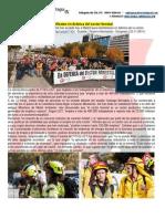 Cientos de trabajadores se manifiestan en defensa del sector forestal