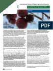 19th Isofar Newsletter Nov 2014