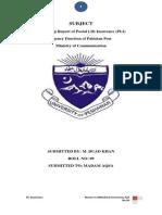 Internship report of PLI (1).docx