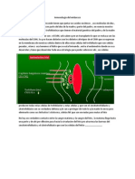 Fisiopato 12 (Inmunologia Del Embarazo)