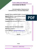 TP REMATE CABALLOS CRIOLLOS.doc