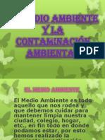 el medio ambiente y la contaminacin ambiental