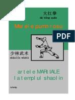 148310698 Marele Pumn Rosu Artele Martiale La Templul Shaolin