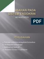 Perubahan Pada Sistem Endokrin