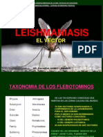 Vectores de leishmaniasis.ppt