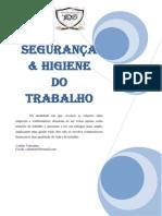 Segurança.pdf