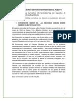 Trabajo Práctico de Derecho Internacional Público