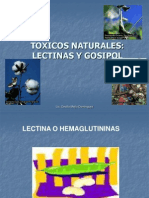 Lectina y Gosipol
