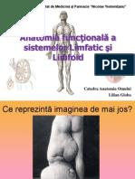 Anatomia Sistemului limfoid 2013.pptx