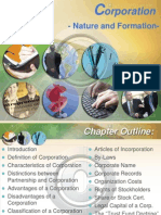 Chapter 6_Nature and Formation_fin
