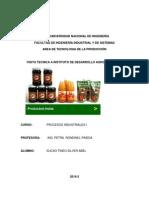 INFORME DE INNDDA.docx