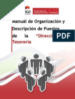 Plantilla Manual de Org y Desp de Puestos