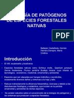 Biologia de Patogenos Forestales