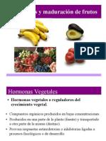 Hormonas Clase 2 Dr. Civello