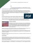 metabolism of sprinters and marathon runners