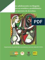 Embarazo Adolescente Bogota Evaluacion Estrategia Comunicacion