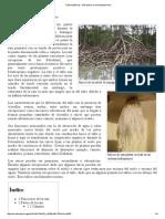 Raíz (botánica) - Wikipedia, la enciclopedia libre.pdf