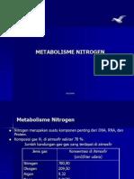 Metabolisme Nitrogen