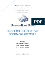 Informe de Procesos de Produccion de Bebidas Gaseosas