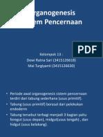 Organogenesis Sistem Pencernaan