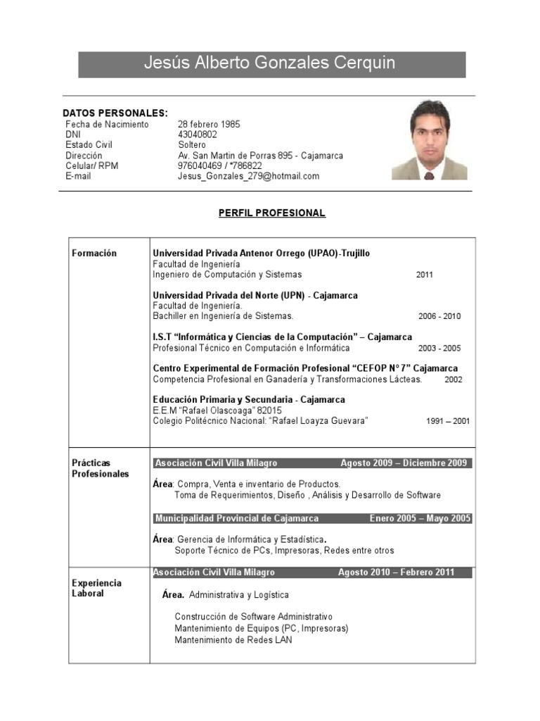 ejemplo de cv documentado