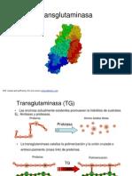 TG AJINOMOTO.pdf