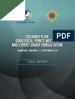 Final Report DFPM