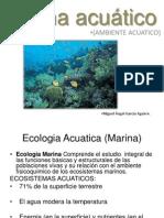 Bioma acuático