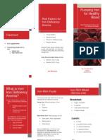 510 lesson plan brochure