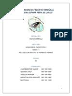 Informe Pavimento Flexible