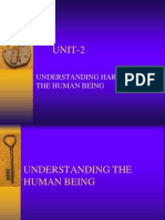 Maslows Hierarchy of Human Needs