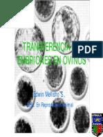 E Mellisho-Transferencia de embriones ovinos.pdf