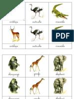 Carte Nomenclature Faune Africaine