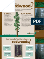 redwood exhibits