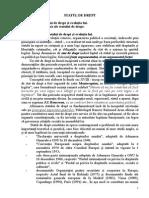 Tema 6 Statul de drept.doc.doc