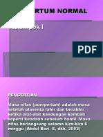 Postpartum Normal