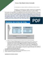 Ciclo_deVida