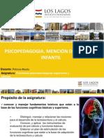 Aplicacion e Interpretacion Del Diagnostico